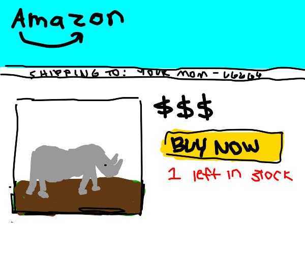 Buying a rhino on Amazon