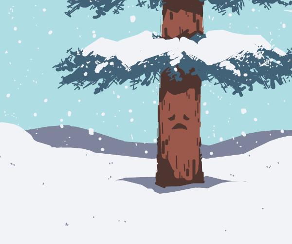 sad tree in the snow