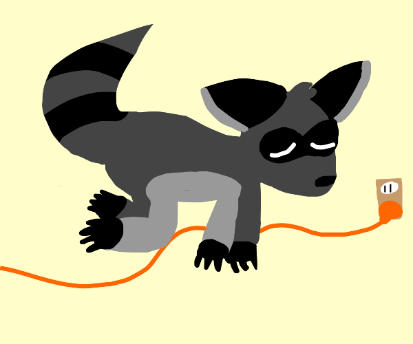 raccoon laying on electrical line