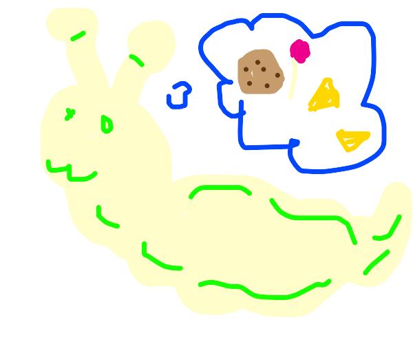 Slug thinks about snacks