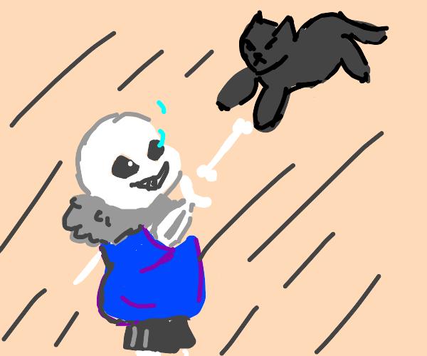 Sans fights a cat