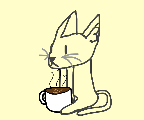 cat with coffee on its lap