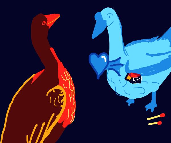 Pyromaniac goose falls in love