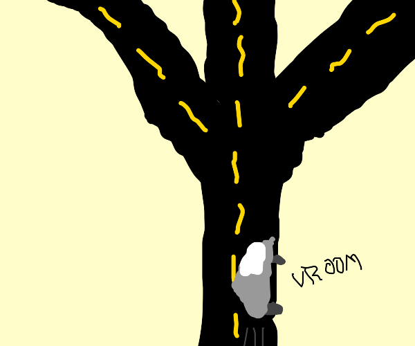 road that spilts into three