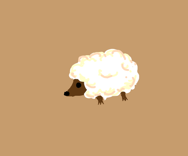 Hedgehog with sheep wool instead of spikes