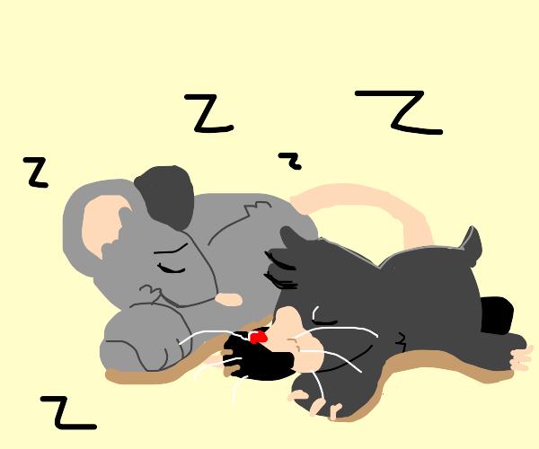 Die Maus und Der Kleine Maulwurf schlafen