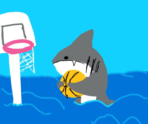 Cute shark plays basketball