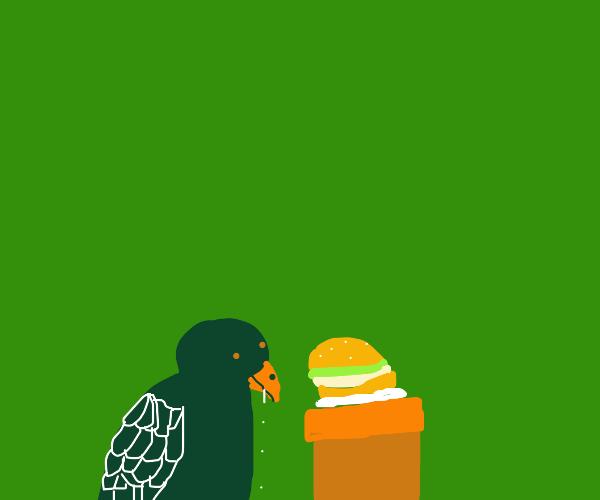 Bluebird drools over cheeseburger