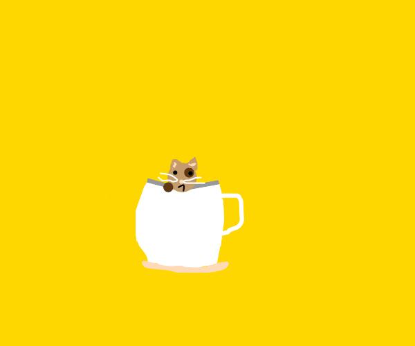Smol Cat in a Teacup