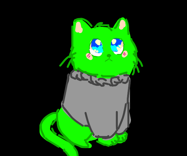 green cat with a sweater