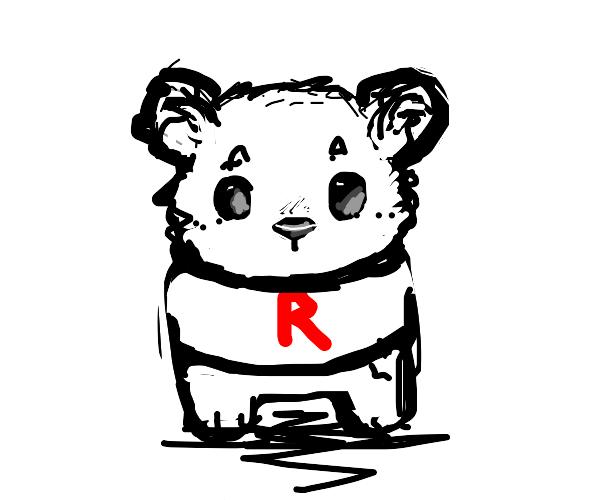 Bear where a team rocket shirt