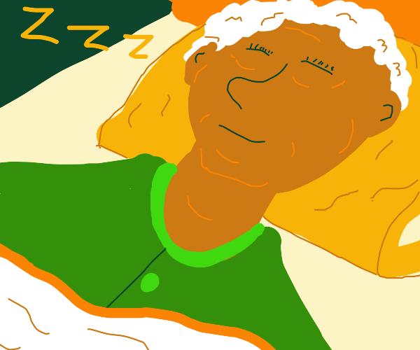 Black grandma sleeping on her velvet pillow