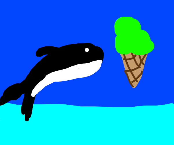 Orca jumping for icecream