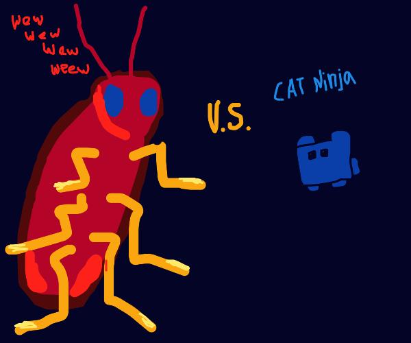 Ninja Cat vs Cockroach