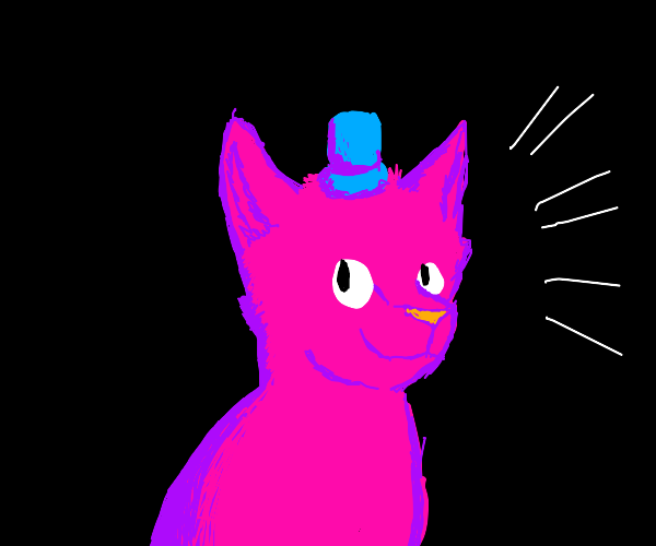 pink cat in a tiny blue top hat