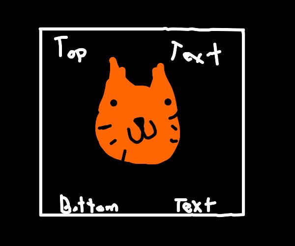Top Text/Bottom Text meme