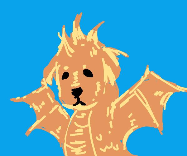 Dragon dog hybrid