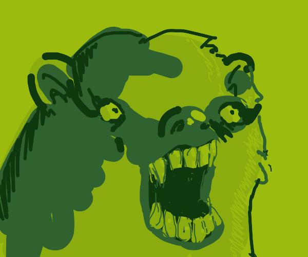 A crazed bear