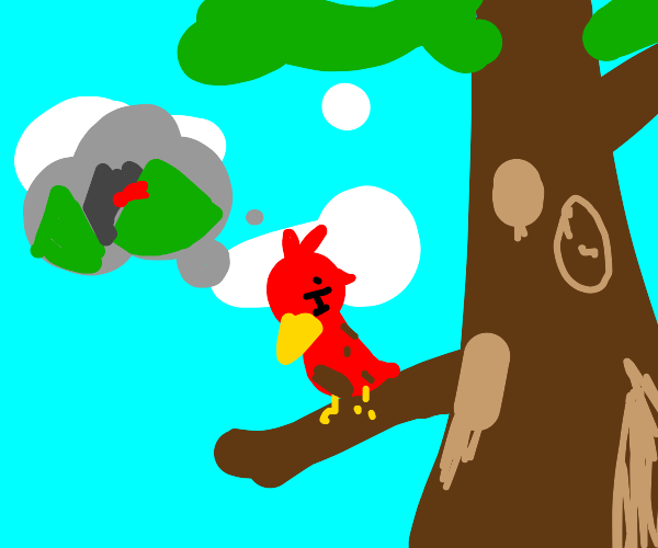 Red Bird misses the mountains from his visits