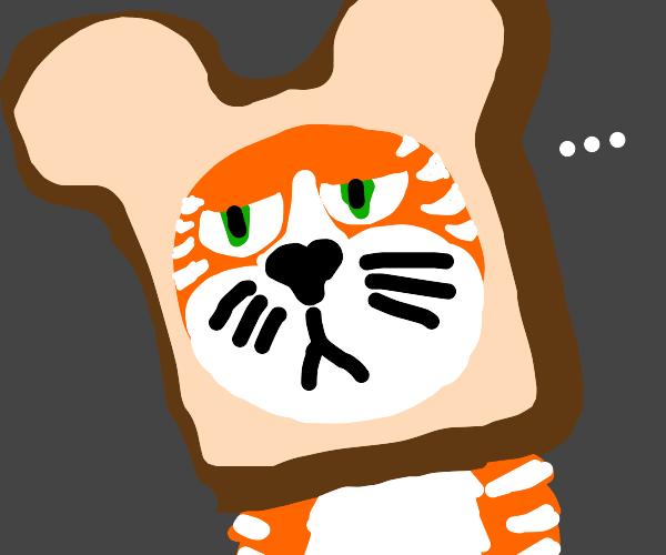 A Inbread Cat