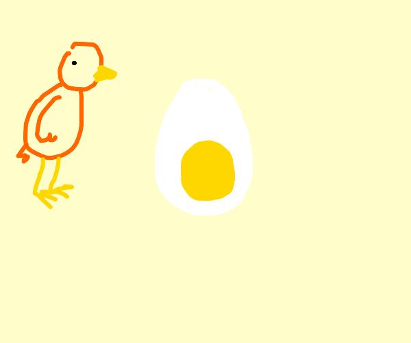 Egg or White oval