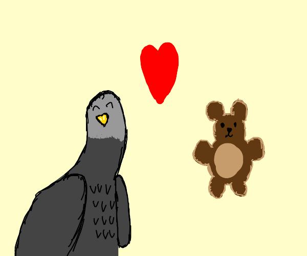 Pigeon loves his teddy bear