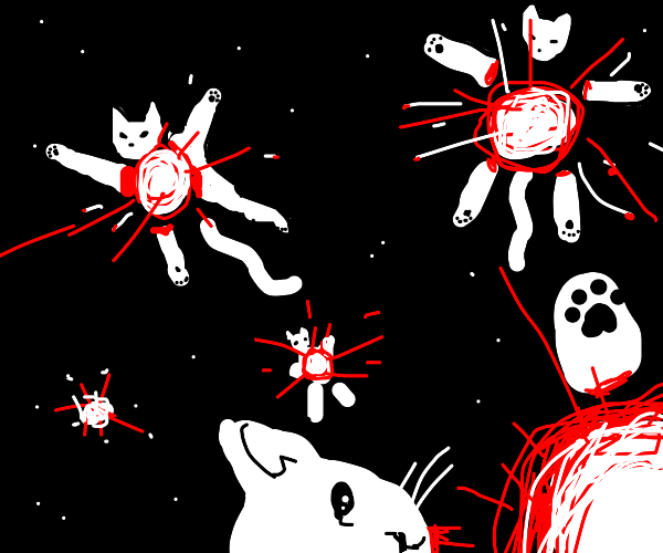 Explosive cats