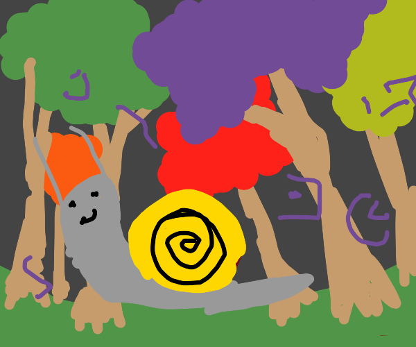 Snail in enchanted forest