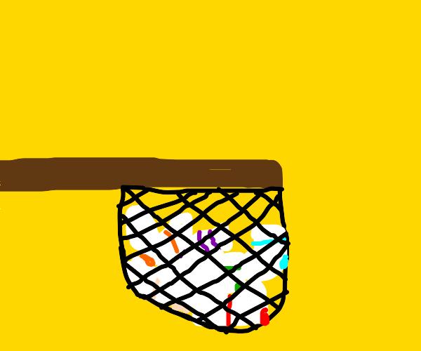 Catching socks in a net