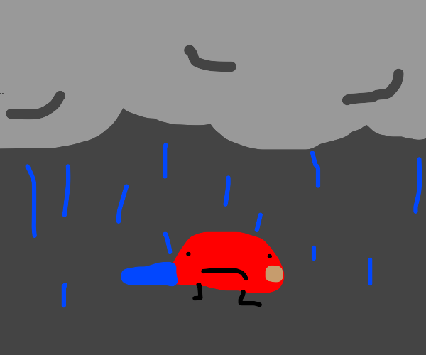 raining on a sentient hat