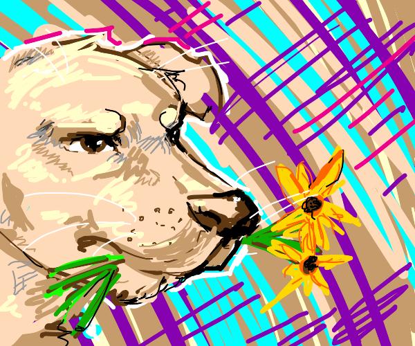 Dumb dog eats flowers