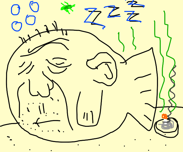 sleepy fish boi