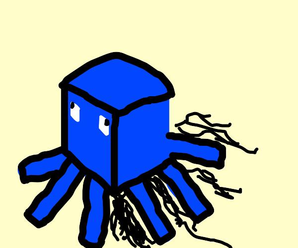 boxy squid