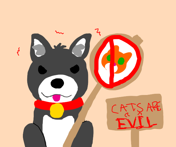 Dog cancels cats