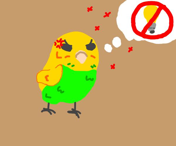 birds dislike lightbulbs