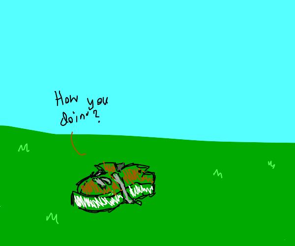 A talking shoe on a nice field