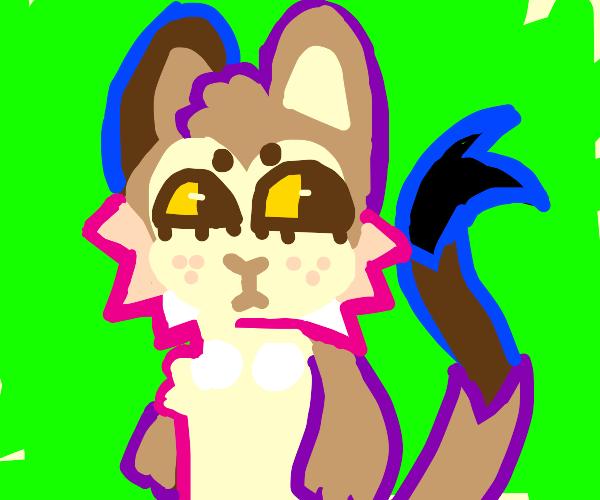 Fuzzy Chipmunk