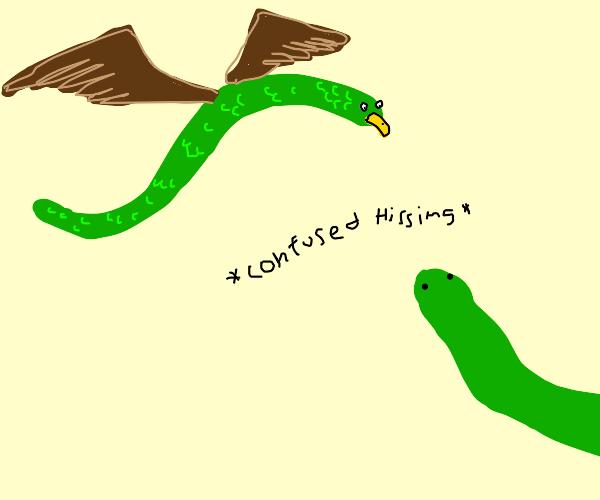 SnakeBird confuses a Snake