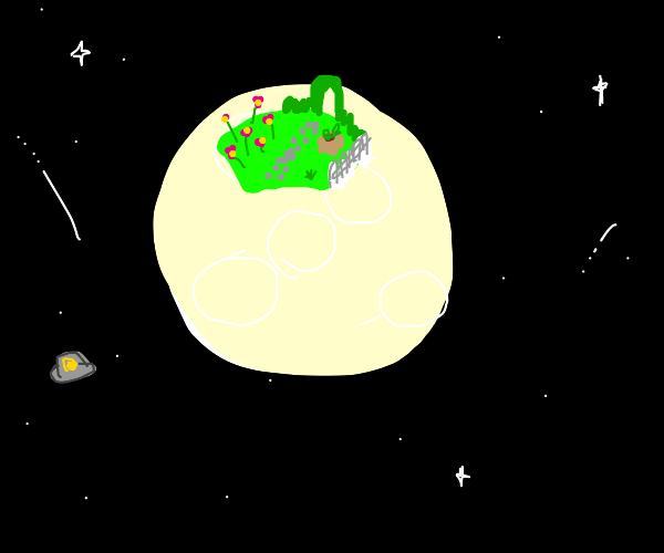 a garden in space