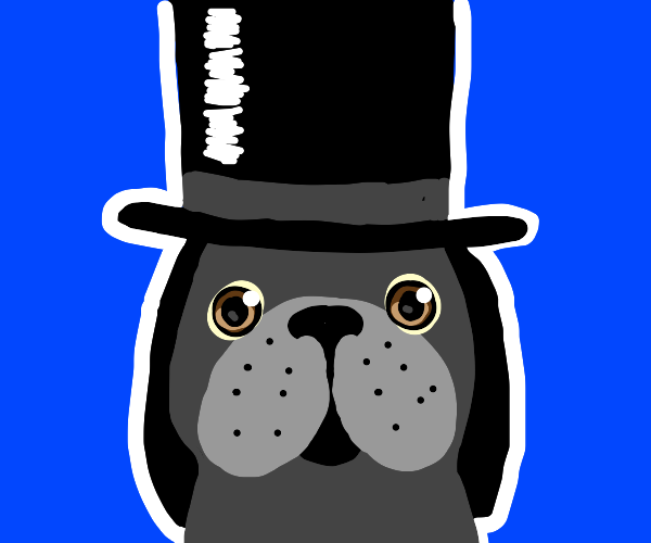 A dog with a top-hat on it's head