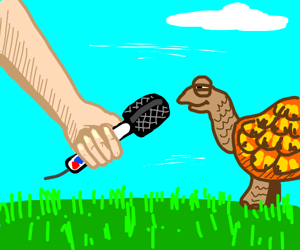 A turtle giving an interview