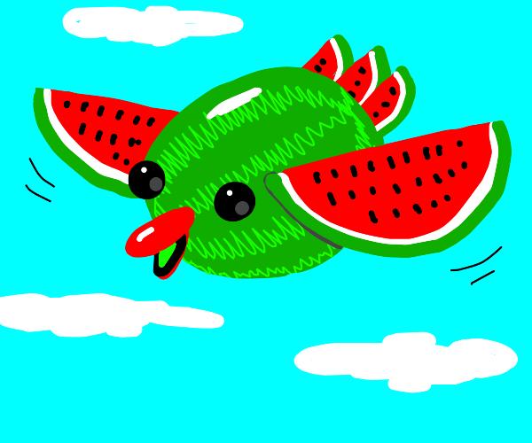 Flying watermelon bird