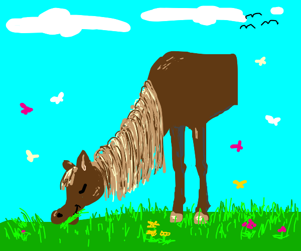 Half brown horse