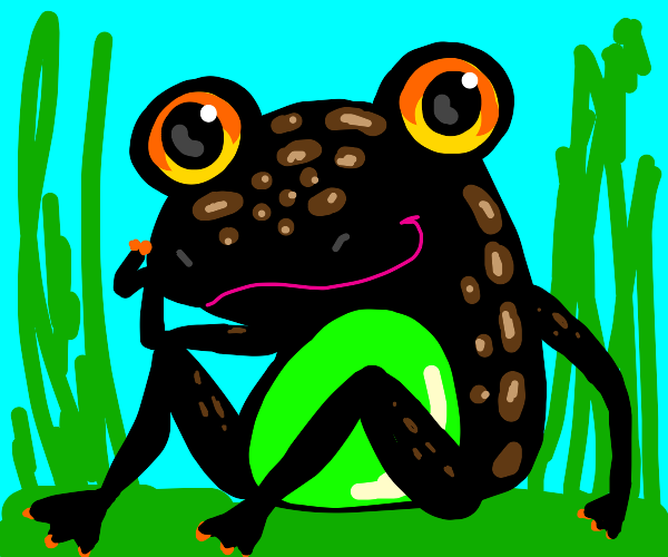 frog with green belly