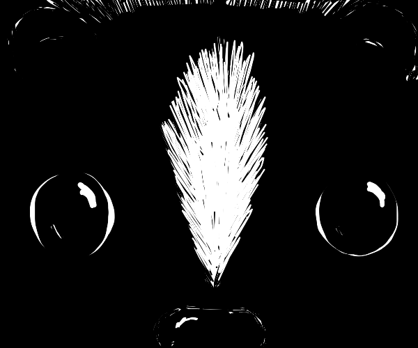 Skunk stares at you