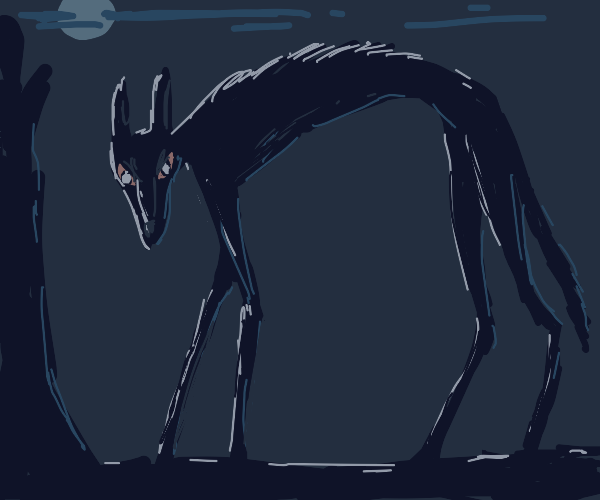 Long wolf on a night