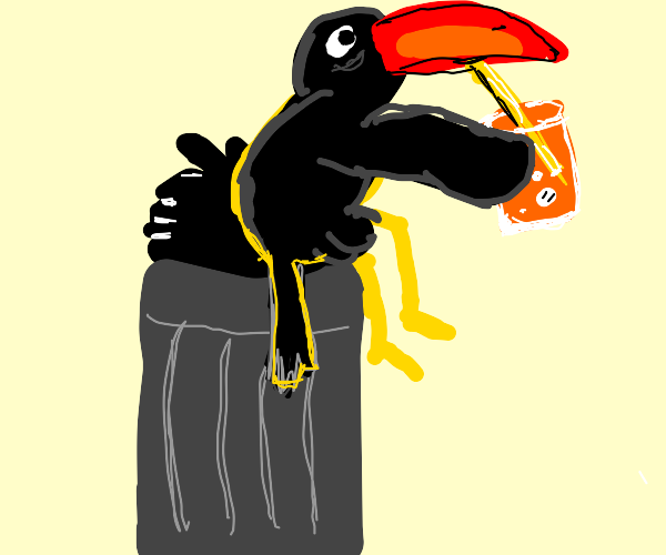 a toucan on a trash can drinks from a straw