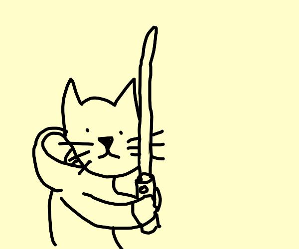 Cat Jedi