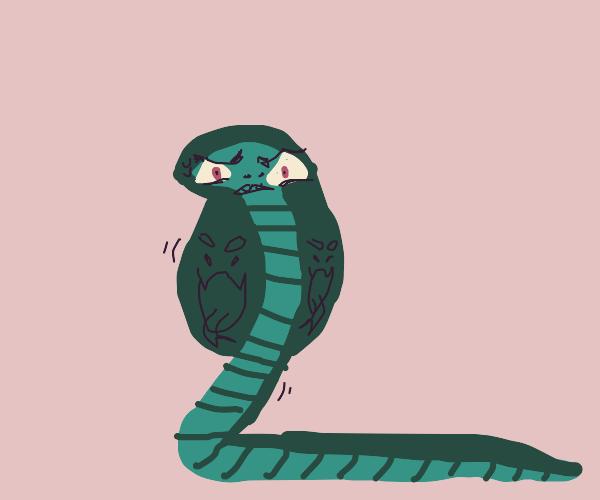 Disturbed-looking naga