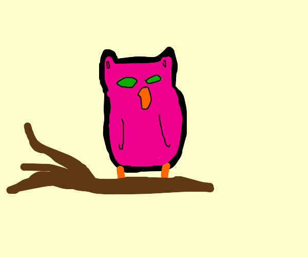 Owl paints ...